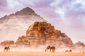 Jordanien  -  Wandern durch Wüste und Wadis